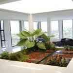 Jardinia: la solución para tu jardín 4