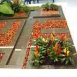 Jardinia: la solución para tu jardín 6