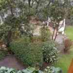Jardinia: la solución para tu jardín 9