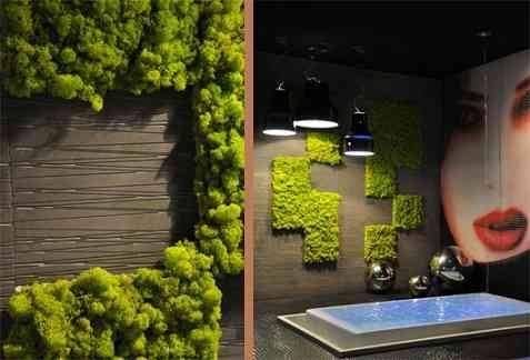 Decora con plantas las paredes de tu hogar decoraci n de for Paredes verticales de plantas