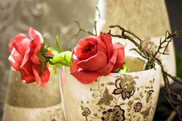 Decora tu jardín con flores y muchos colores 6