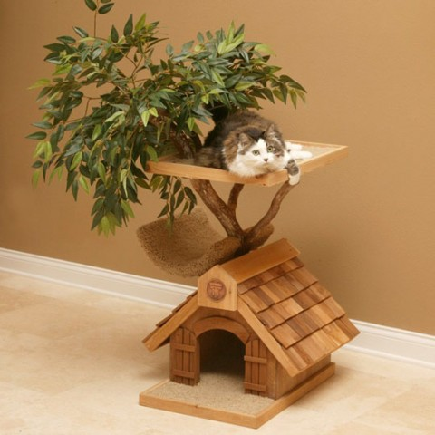 Una casa de árbol para tu mascota 1