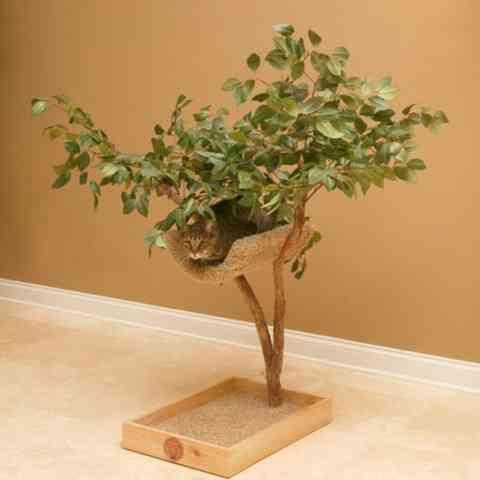 Una casa de árbol para tu mascota 3