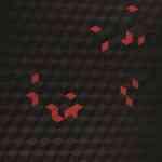 Dot y Cube, las dos nuevas colecciones de manisas geométricas de Kale 7