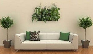 wallnatura_decorar_con_plantas_las_paredes
