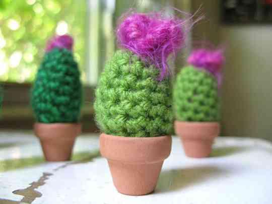 Cactus tejidos de Gerard Shannon 1