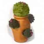 Cactus tejidos de Gerard Shannon 3