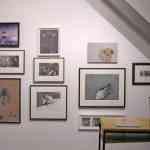 opendeco-paredes-galeria-arte (21)