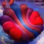 Anemone silla de Giancarlo Zema