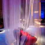 Anemone, la nueva preciosa silla de Giancarlo Zema 7