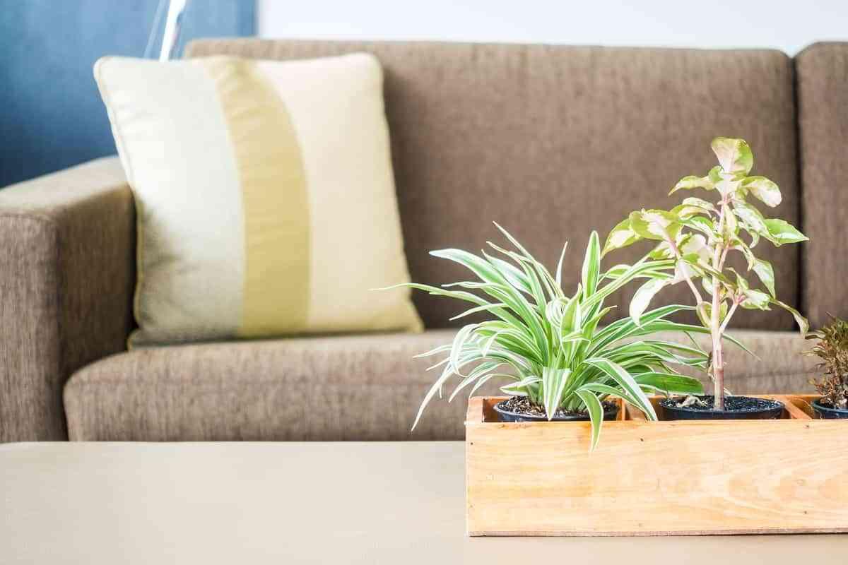 Ideas para un estilo bohemio en tu casa 3