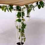 Plantable, una mesa a la que le crece la naturaleza de Jailmake 3