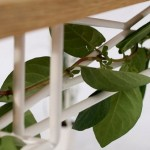 Plantable, una mesa a la que le crece la naturaleza de Jailmake 7