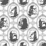 Empapela la pared con las fuerzas Imperiales de Star Wars 3