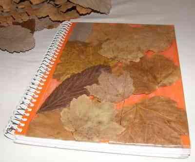 Manualidades con hojas de otoño 2