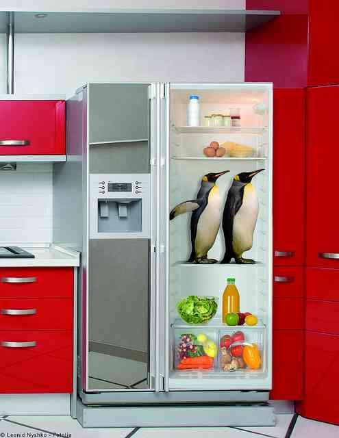 Ideas sorprendentes para decorar la cocina con vinilos for Adhesivos neveras decoracion