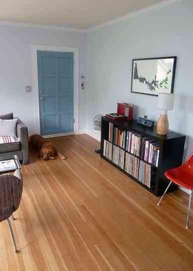 Pintar las puertas de casa decoraci n de interiores for Pintar puertas interiores
