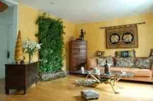 Plantas en interiores: moderación y buen gusto 1