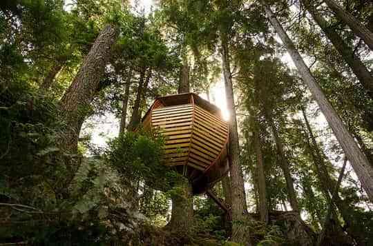 Una casa en el árbol con mucho estilo 3