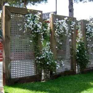 Celos as en el jard n oculta de miradas curiosas for Celosia de madera para jardin