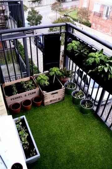 Un jardín en el balcón 3