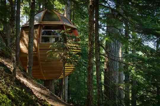 Una casa en el árbol con mucho estilo 4