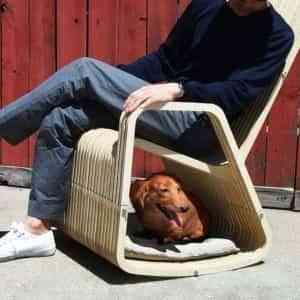 Mecedora y caseta para perro 1
