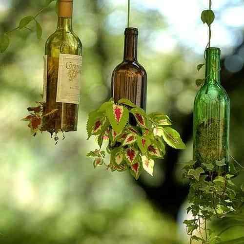 Realiza Un Macetero Colgante Con Una Botella De Vidrio Decoracion - Vidrio-decoracion