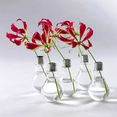 decorar con flores y bombillos