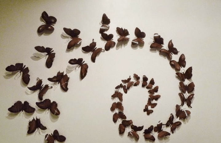 Decorar paredes con mariposas en relieve for Decoracion con figuras en la pared