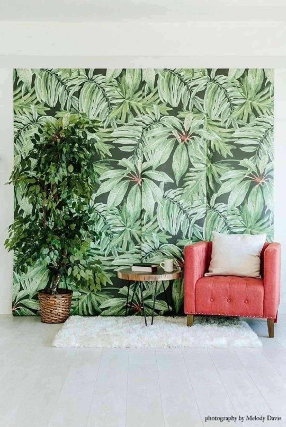 paredes de verano