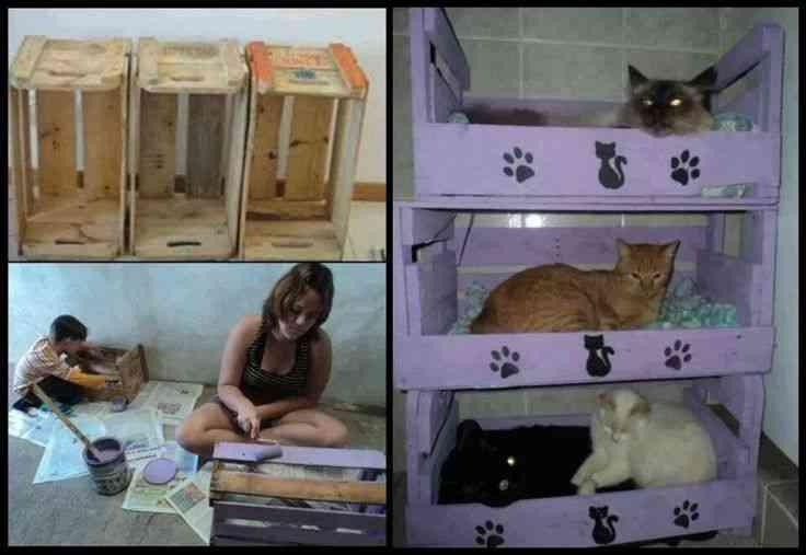 Cama para gatos hechas con palets - Arbol gato ikea ...
