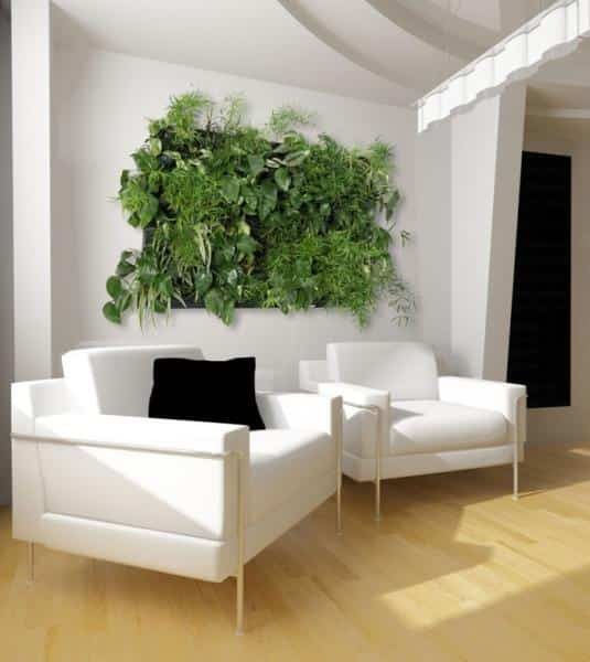 wallnatura-pared-vegetal-para-jardin-vertical-interior