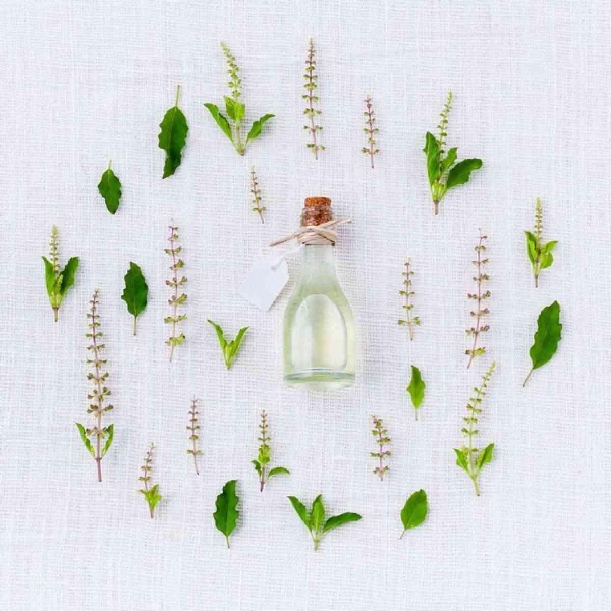 buen olor con eucalipto y menta