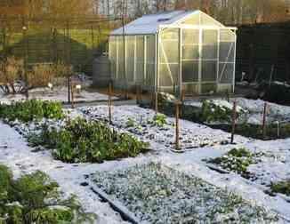 cuidar el jardin