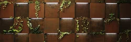 pared vegetal