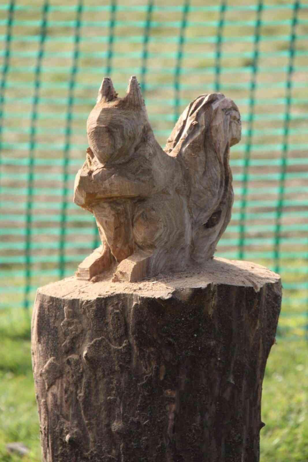 ardilla de madera