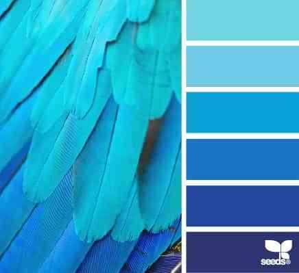 Colores azules para decorar dormitorios masculinos - Gamas de colores azules ...