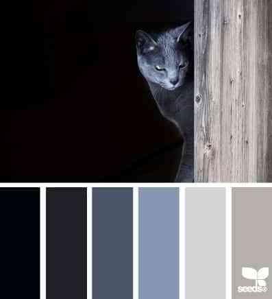 colores para pintar dormitorios grandes