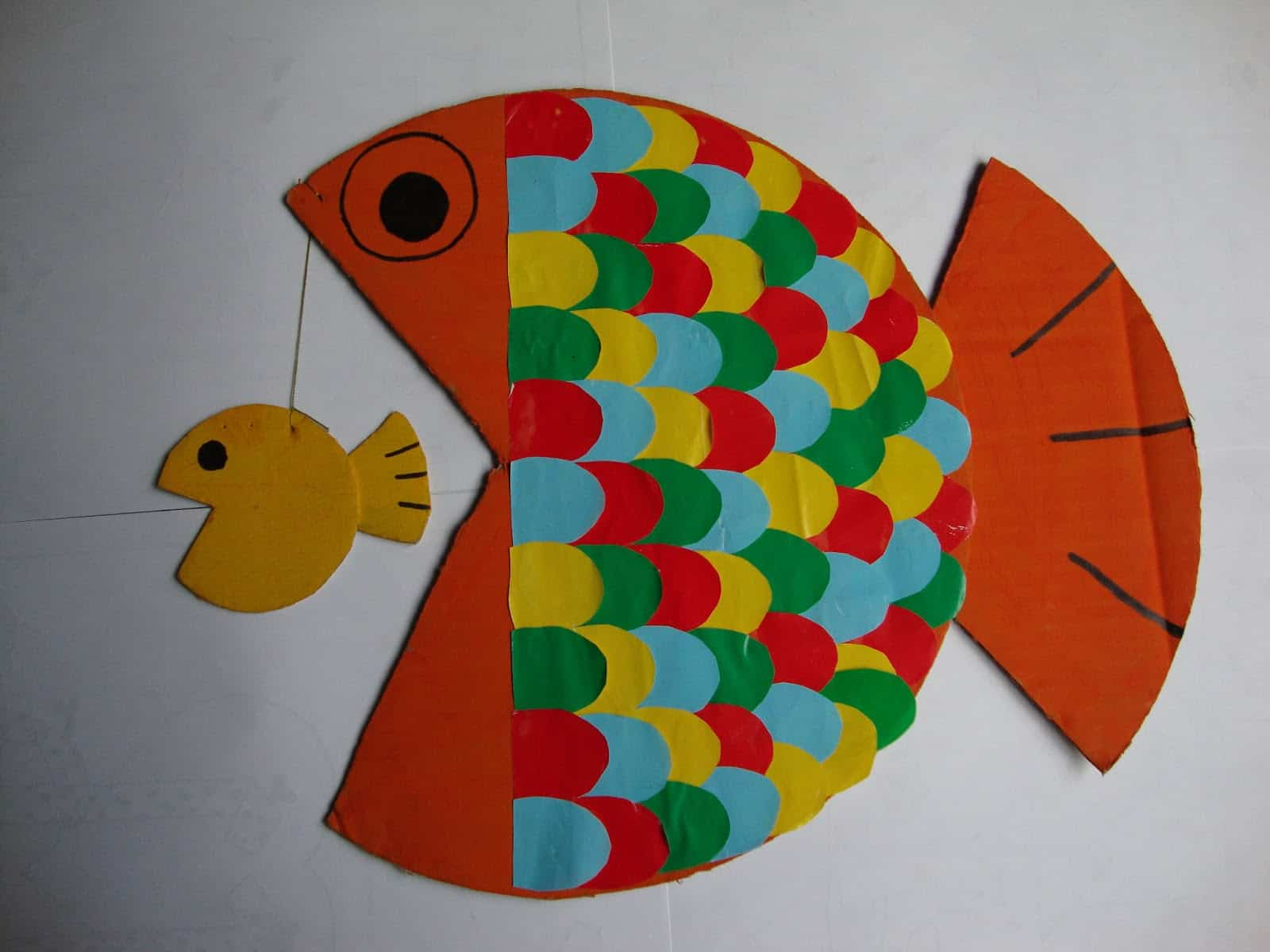 peces de colores1