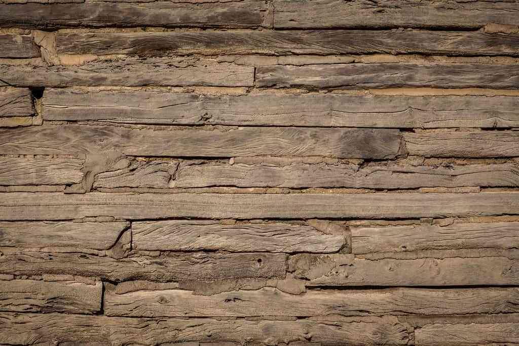 Paredes de madera y sus beneficios - Paredes en madera ...