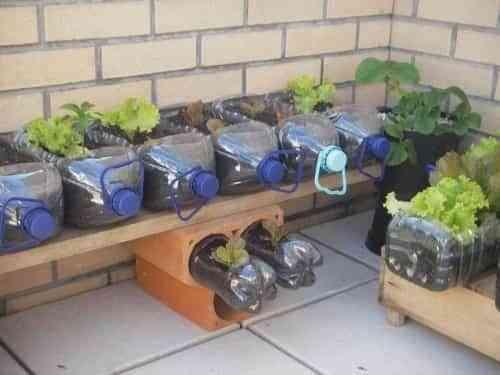 mini jardín reciclado