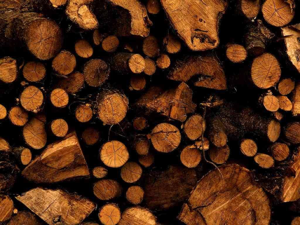 paredes con maderas