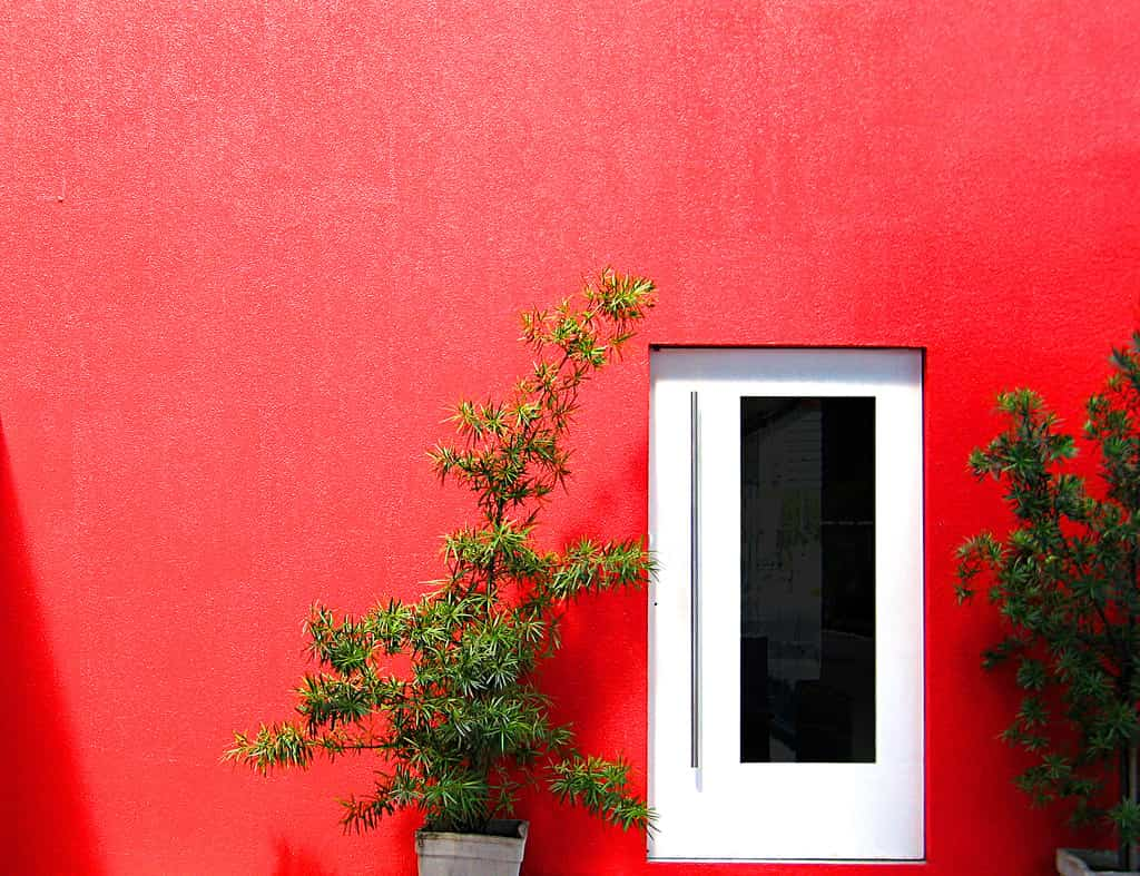 Desperfectos de tus paredes