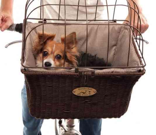 canasta para llevar a mascotas en bicicleta