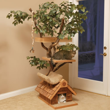 casa de árbol natural para gatos