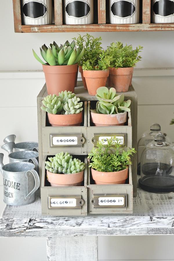 pequeño jardin vertical