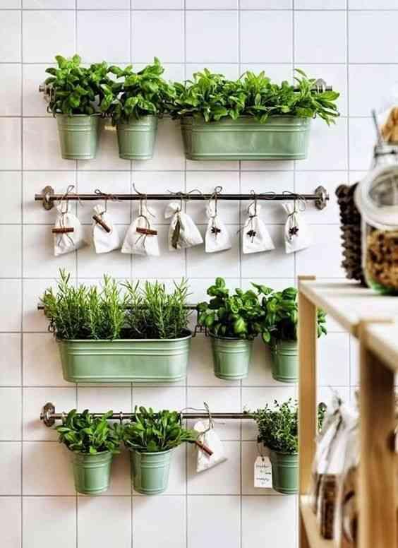 decorar con hiervas aromaticas IV