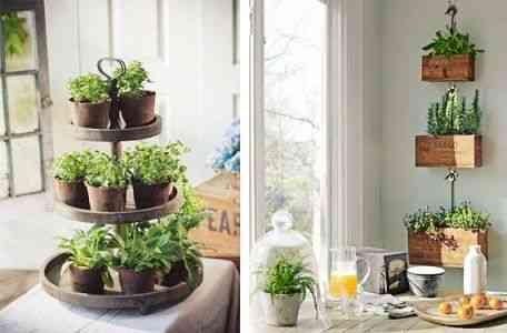 decorar con hiervas aromaticas XI