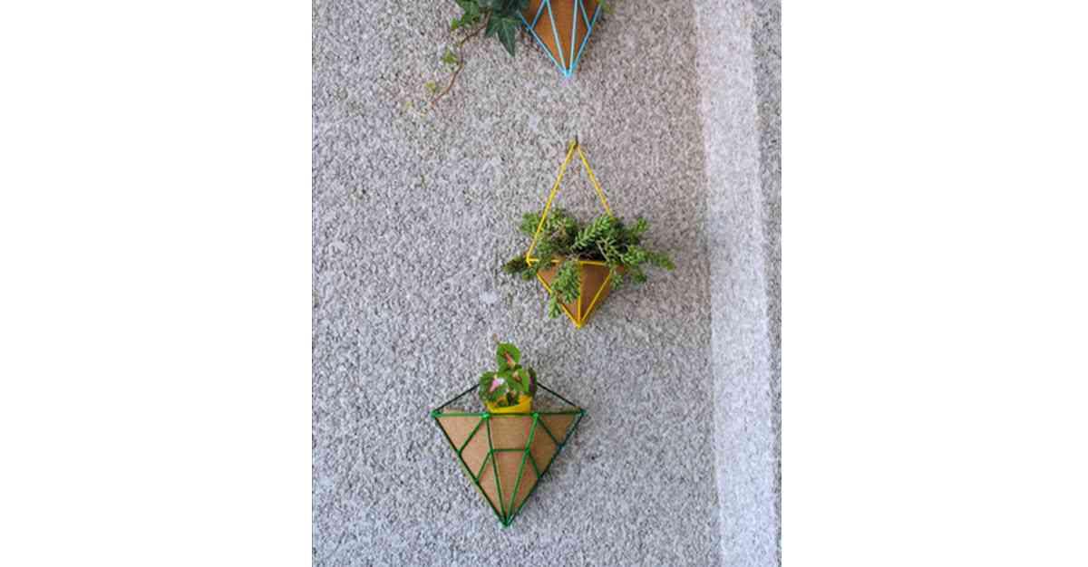 decorar una casa con plantas